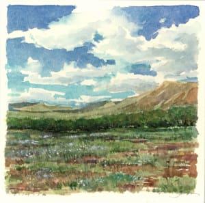 Late Summer Vista