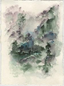 Vmw0169 mist over north johnstone river gorge web li3hue