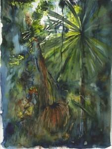 Vmw0170   licuala palm circle of life web qt5z5w
