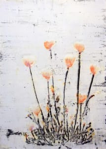 Keshi okasumeru (Delicate Poppy)