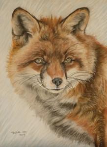 Just a fox 10x13