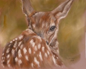 Resting fawn 12x9 100 kuho1c