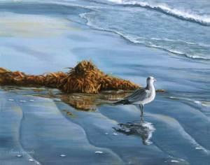 The gazing gull  web 30 600px odbihk