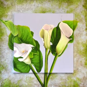 Cottage Calla Lily