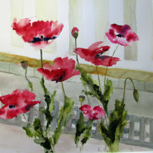 Mar Vista Poppies