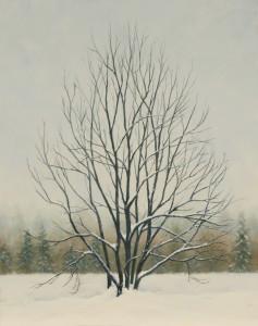 Winterwonder.14x11
