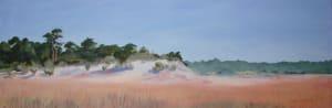 2014 0130 grayton beach rosy grasses o7j1v9
