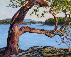 Arbutus tree with a view 8 x 10 acrylic study on gessobord by terrill welch july 30 2017 img 7997 okbkt5