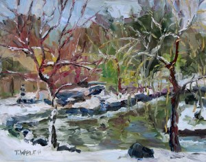 Early March Snow Japanese Garden Mayne Island BC