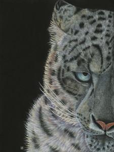 Snow-leopard-finished-3_sunrwa