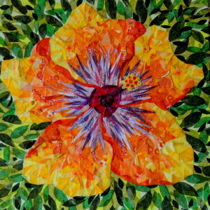 Climax hibiscus qlqwlt