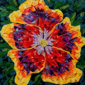 Night runner hibiscus kttoiw