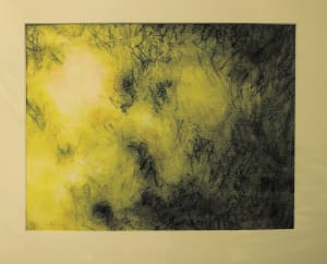 Impermanence (tree light study)