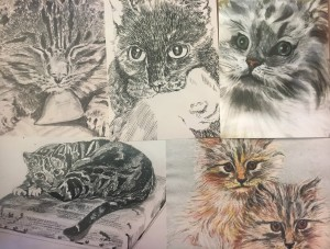 Mimi collection-cat themed 5 pack (low color)