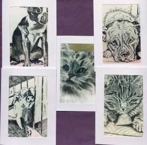 Mimi collection- animal lovers mix in black and white -5 pack