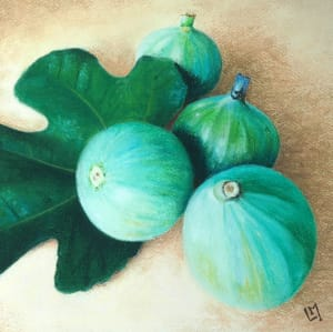 Green Figs #3