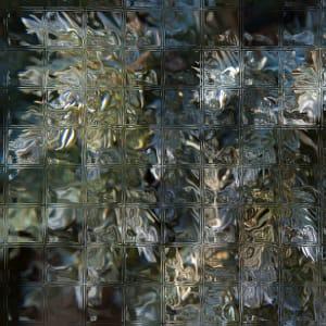 Glass Juniper B