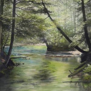 Hamilton. bill emerald river 2000
