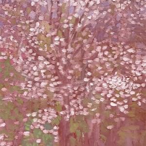 Crimson, Flowering Trees