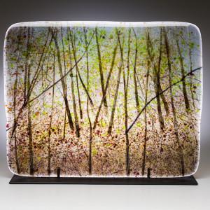 Surmon september woods small file lfkkgy