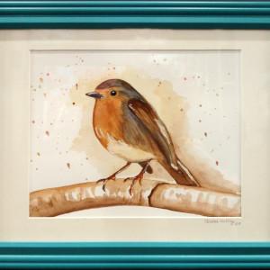 Wc3 redbreasted robin framed ddhjsy