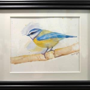 Wc4 blue titmouse framed xonftm