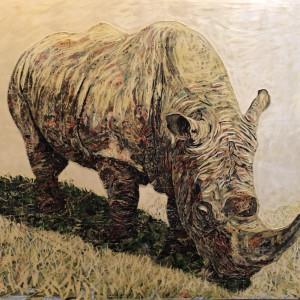 Rhino 1807 pymdfg