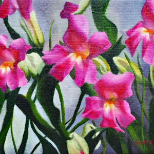 Pretty in pink lvy2pu