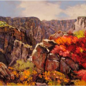 Black canyon color ie9kil