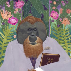 Orangutan 72 8x10 mbqvmw