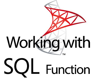Working with SQL Functions