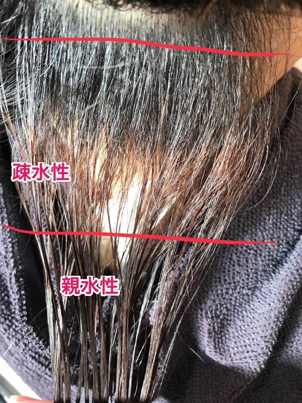 広がる髪の問題点2 水分量の調節機能が弱っている