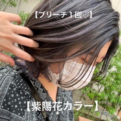 \紫陽花カラー×ウルフ/