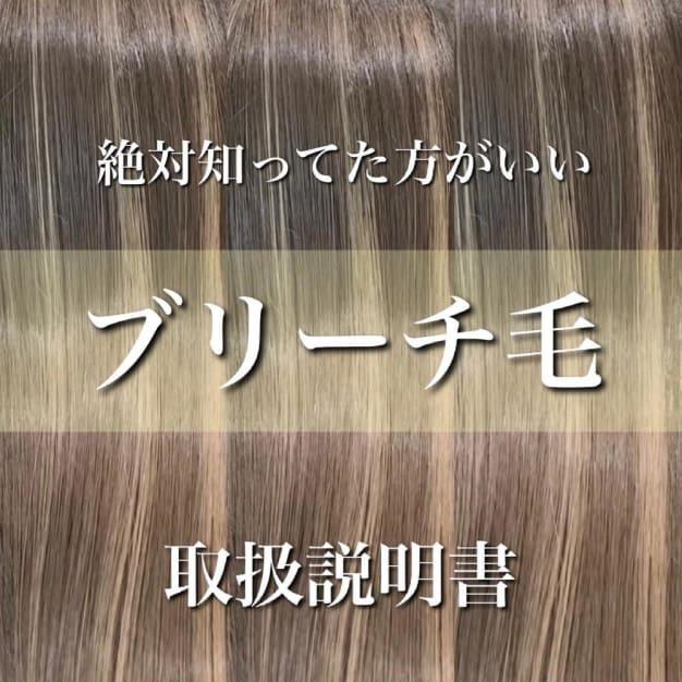 ブリーチ毛、ダメージ毛【取扱説明書】