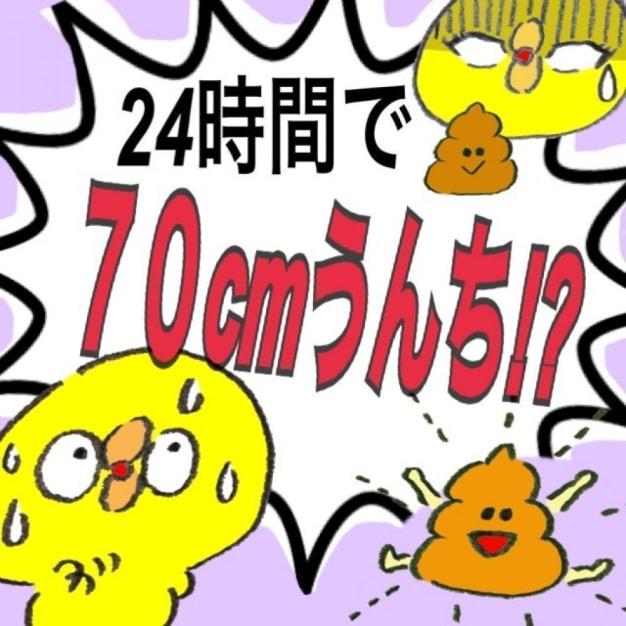 【読まなきゃ損①‼︎‼︎】今流行りの腸活であなたの身体から24hで70cmうんちをだす方法!!!