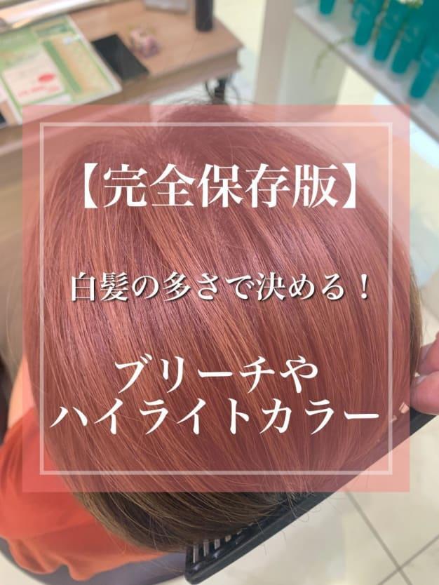 【完全保存版】白髪の多さで決める!ブリーチやハイライトカラー