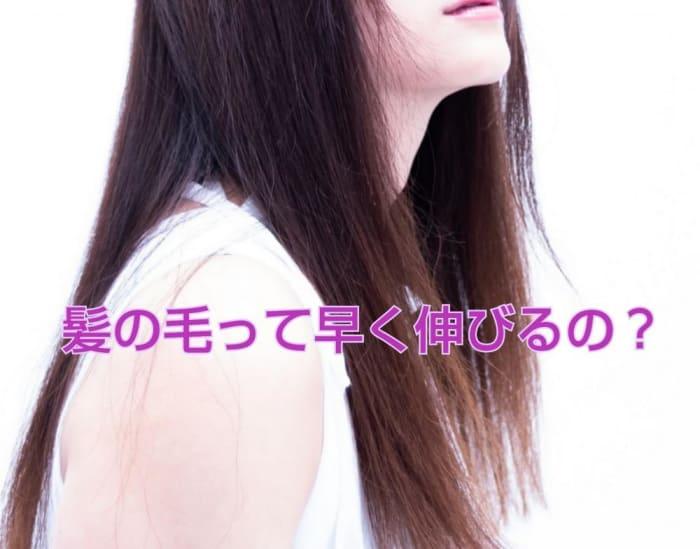 早く 伸ばす 髪の毛
