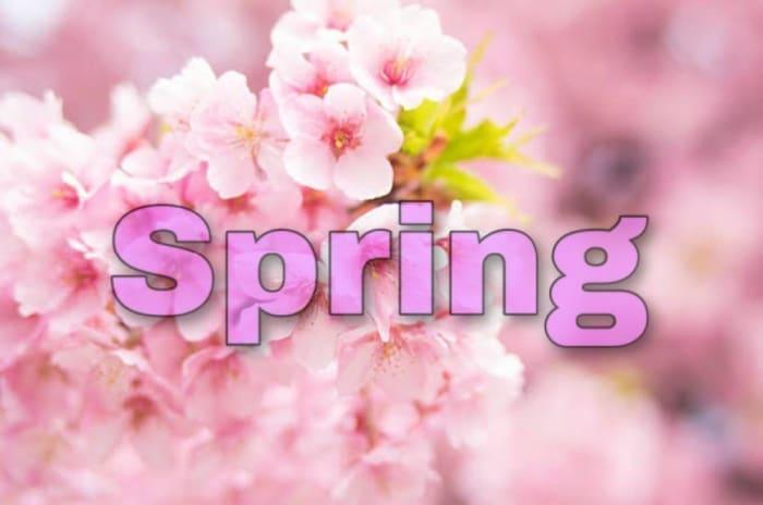 【春】タイプの芸能人