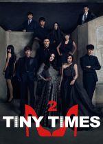Tiny Times 2 film poster