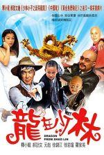 Dragon from Shaolin - 1996