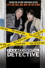 The Accidental Detective - 2015