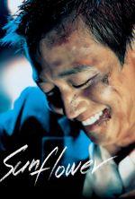 Sunflower - 2006