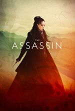 The Assassin - 2015
