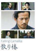 Falling Camellia - 2018