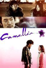 Camellia - 2010
