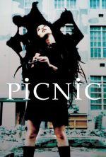 Picnic - 1996