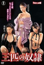 Three Slave Women - 2009
