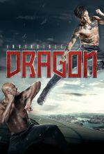 The Invincible Dragon - 2019
