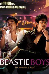 Beastie Boys film poster