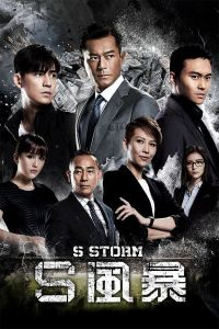 S Storm film poster